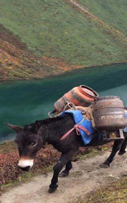Bhutan @ Glance: 3N-4D